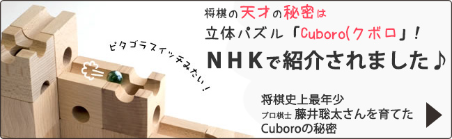 将棋の天才、史上最年少棋士藤井聡太さんを育てたキュボロ(cuboro/クボロ)の秘密