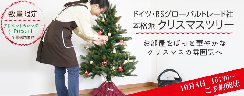 クリスマスツリー予約開始